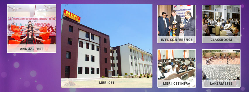 Management Education Research Institute Delhi