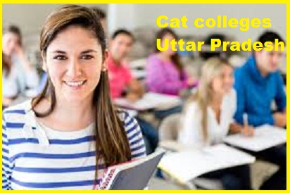 Cat Colleges Uttar Pradesh