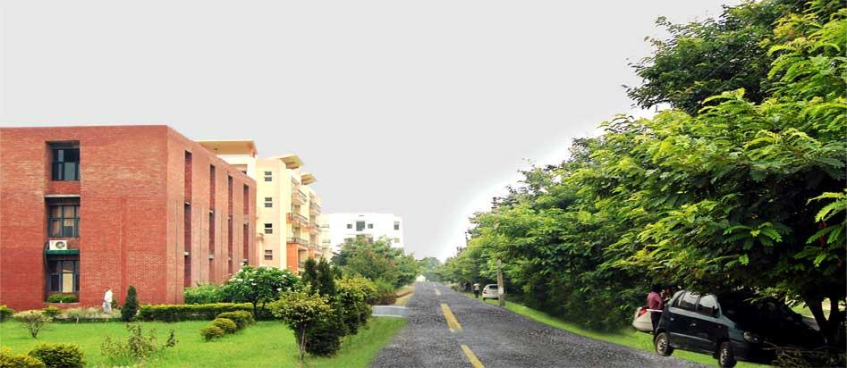Divya Jyoti College of Engineering & Technology