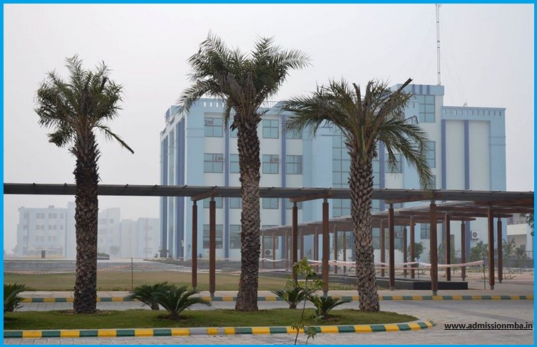 MVN University Faridabad Admission 2019-20