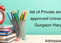 Private University Gurgaon